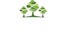 Pallet & Case Manufacturers Leeds, Bradford | D&K Pallets